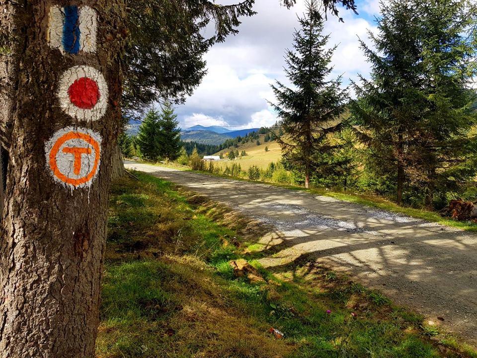 Via Transilvanica: Se pun primele borne kilometrice ...  |Via Transilvanica